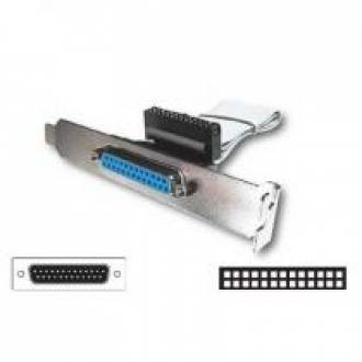 CABLE INTERFACE CIERRE SLOT BRACKET PARALELO 25 HEMBRA (C-2)